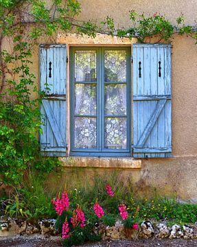 Wicked Window (Blue) van