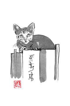 kat op boek van philippe imbert