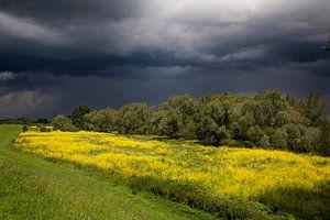 Onweerswolken boven uiterwaarden van Ger Loeffen