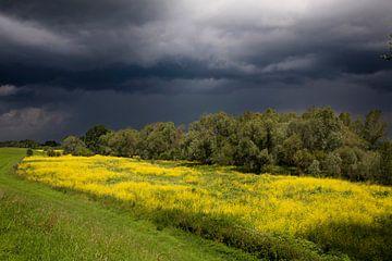 Onweerswolken boven uiterwaarden von Ger Loeffen