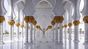 Sjeik Zayed-moskee - Abu Dhabi van