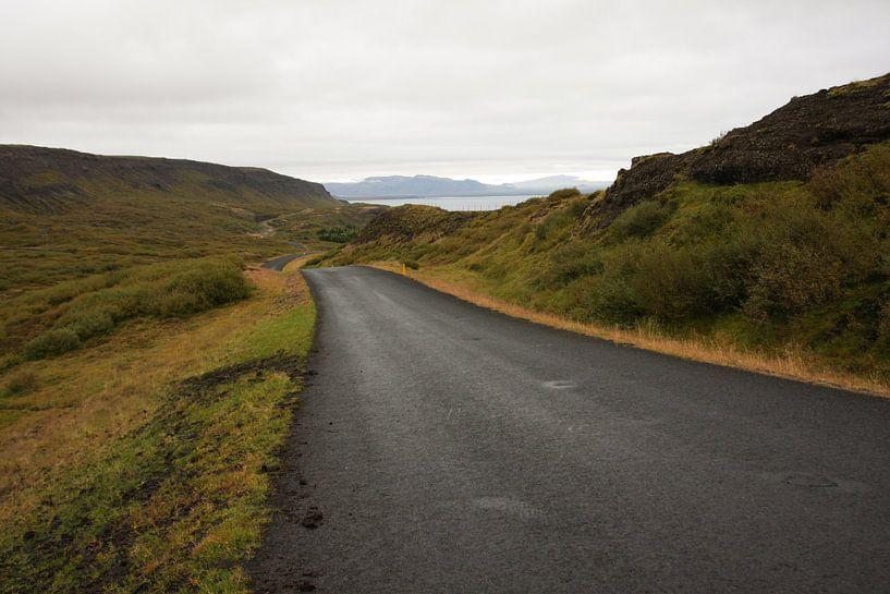 Lonely road van Louise Poortvliet