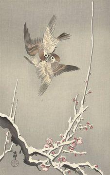 Mussen en besneeuwde pruimenboom van Ohara Koson