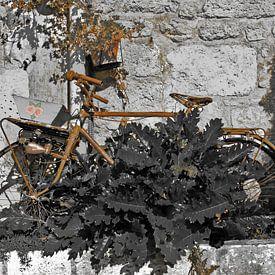Rust roest van Gerda H.