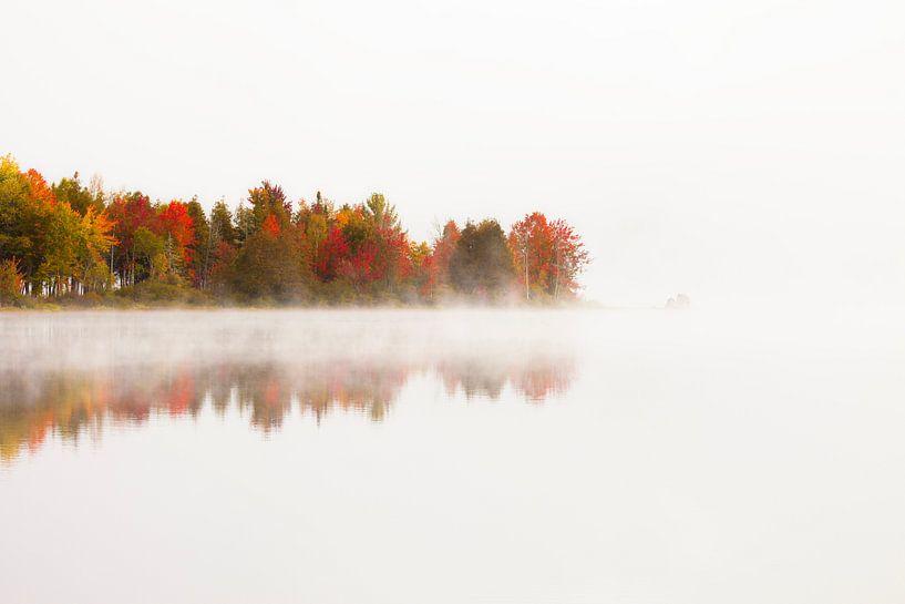Herfstkleuren van Frank Peters