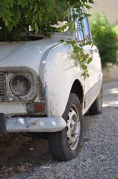 Verwilderde Renault van Ruud Crins