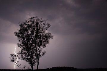 Blitz von Maarten Krabbendam