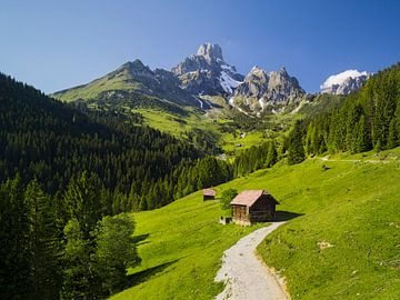 Alpenzomer I van Rainer Mirau