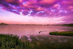 Purple morning... van Hermen van Laar