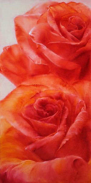 Rosen von Annette Schmucker