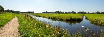 Panorama van een Weiland van