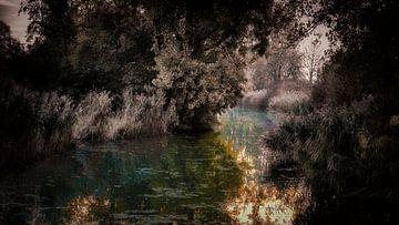 Herbstlicher Teich in Purmerend von Jan van der Knaap