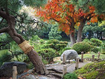 Kiyosumi-Garten, Tokio von Eline Melis