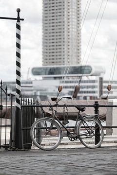 De Veerhaven Rotterdam van Rob van der Teen