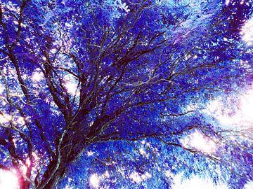 Tree Magic 58 - fairy colors van MoArt (Maurice Heuts)