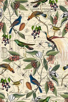 Nostalgische Vögel von Andrea Haase