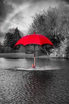 Rode Paraplufontein in Zwart-Witomgeving von Steven Otter