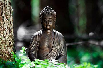 Buddha von Jürgen Wiesler