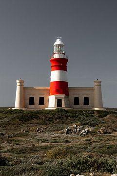 Hermanus Lighthouse, South Africa von Nico Hochberger
