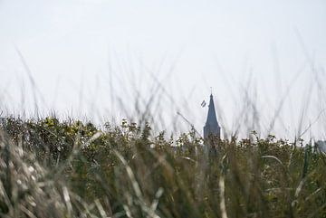 Lang Leve de Koning! - Domburg van Maurice Weststrate