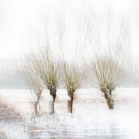 Winter Bomen van Vandain Fotografie