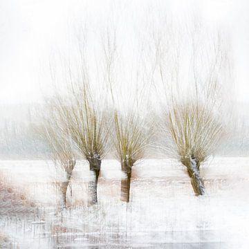 Winter Bomen van Ingrid Van Damme fotografie