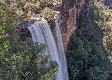 Fitzroy Falls von Pieter van der Zweep