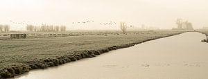 Bevroren polder landschap met bevroren sloot en vliegende ganzen in Nederland van