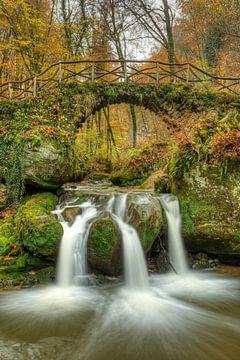 Schiessentümpel waterval Luxemburg van Michael Valjak