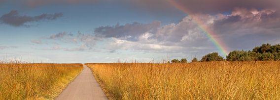 Regenboog panorama van Anton de Zeeuw