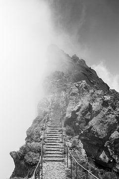 Wandern in Wolken von Arthur Scheltes
