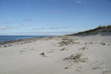 Deze uitgestrektheid! - Strand bij Fischland-Darss-Zingst van Anja Bagunk