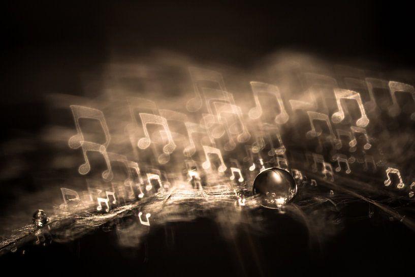 Waterdruppel op een pluis met bokeh in de vorm van een muzieknoot van Bert Nijholt