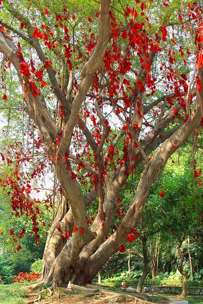 Mystischer Baum von Inge Hogenbijl