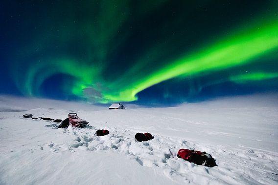 Nordlicht (Aurora Borealis) mit Huskys im Schnee