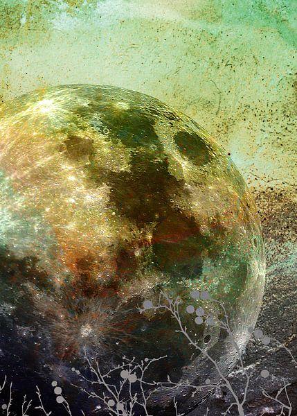 MOON under MAGIC SKY X-3 van Pia Schneider