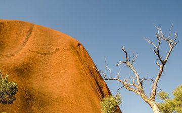 Uluru von Pieter van der Zweep