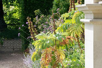 Wilder Garten von Studio Bosgra