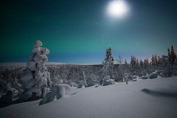 Landschaft von Noorderlicht Finnland von Hans Kluppel