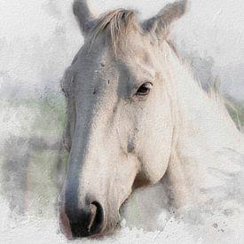 Het witte paard 03 van Olaf Bruhn