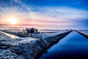 Freezy von Ronnie Westfoto