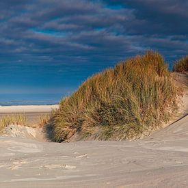 Stranden collectie