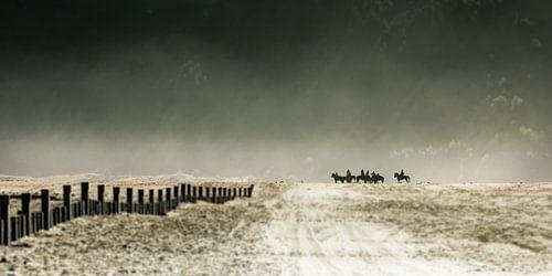 Riding the sea of sand van Thierry Matsaert