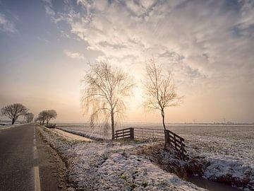 Winterzonnetje van Ron Westbroek