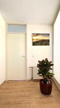 Photo de nos clients: Dishoek Sunset sur Thom Brouwer, sur toile