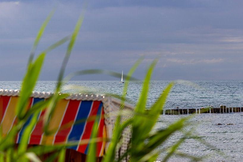 Blick auf den Ostseestrand bei Kühlungsborn von Reiner Conrad
