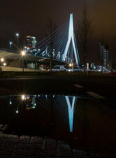 Erasmus Bridge (2014)