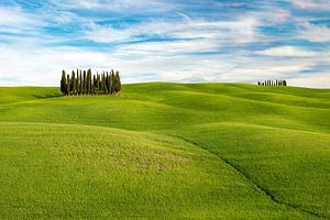 Hilly landscape in Tuscany