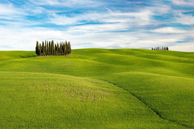 Hilly landscape in Tuscany van Michael Valjak