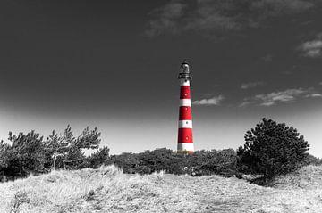 Leuchtturm Ameland in den Dünen von Tony Buijse